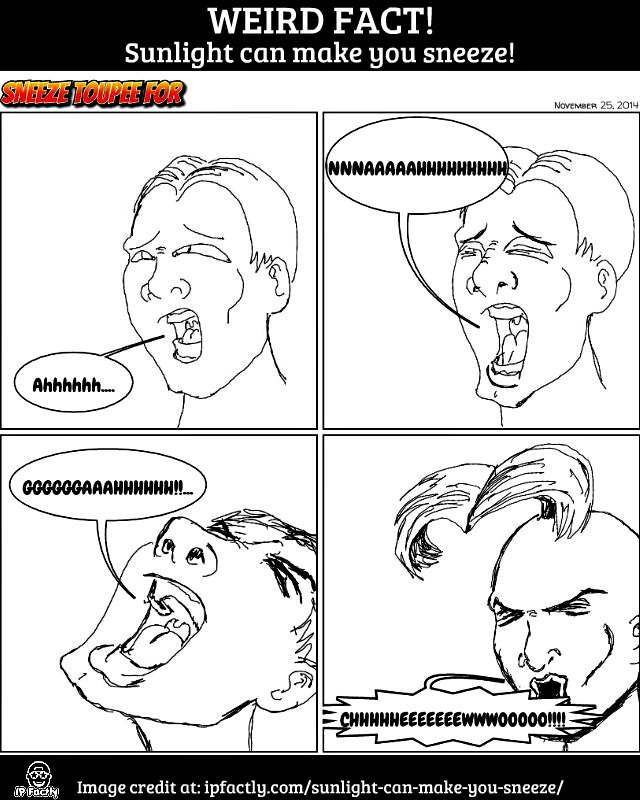 sneeze_toupee_for_by_badboych-d87mw5x
