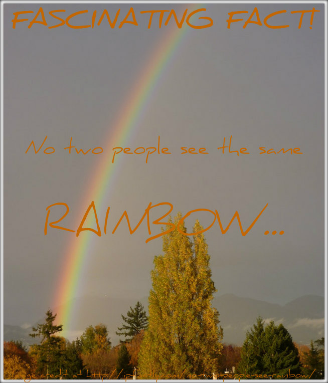 No two people see the same rainbow